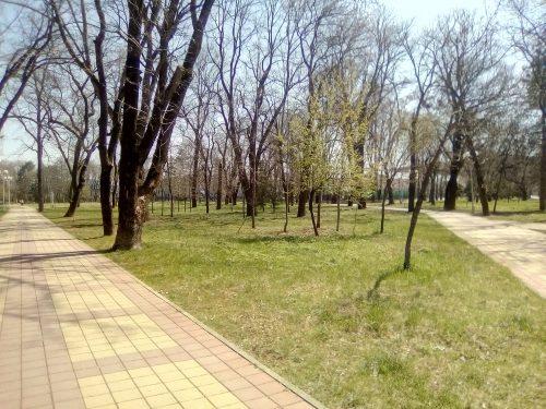 Парк в Майкопе