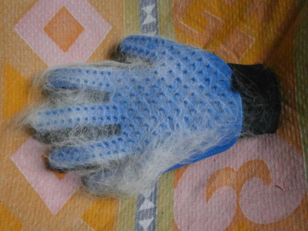 Перчатка для вычесывания животных с Алиэкспресс (за 100 рублей!)