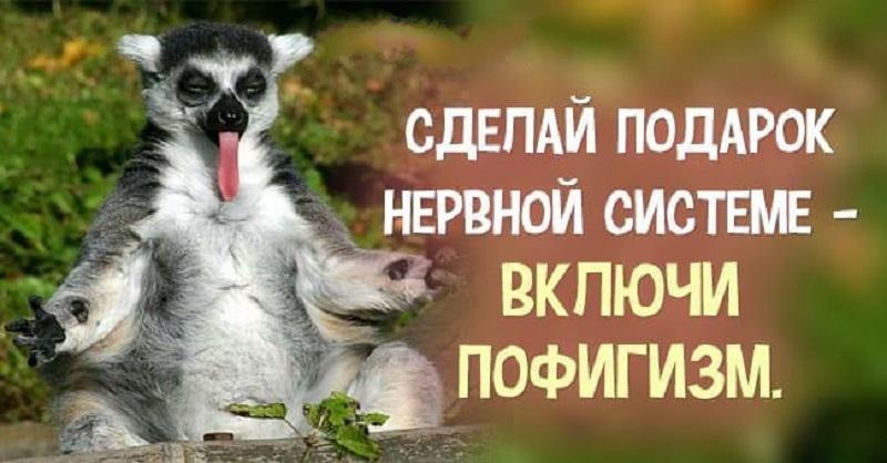 Велаксин. День 89